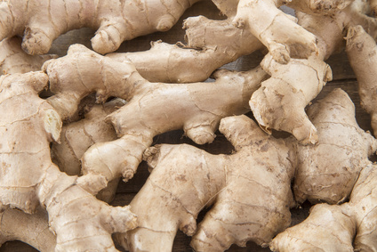 Ginger root on wooden table - Zingiber officinale
